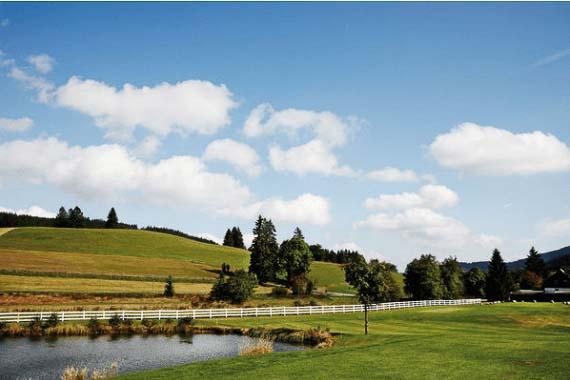 Golfplatz Hochschwarzwald in der Nähe des Seminarhauses